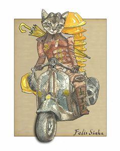 Moto Cat