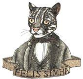 Felis Simha