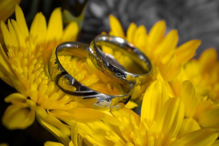 Sunflower Rings - NV Designs - ARTboi