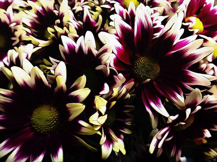 Daisy flowers - Purple - CLA
