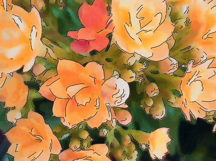 Orange flower of kalanchoe - CLA