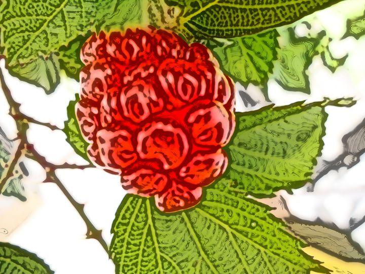 Blackberry or tempu rengat - CLA