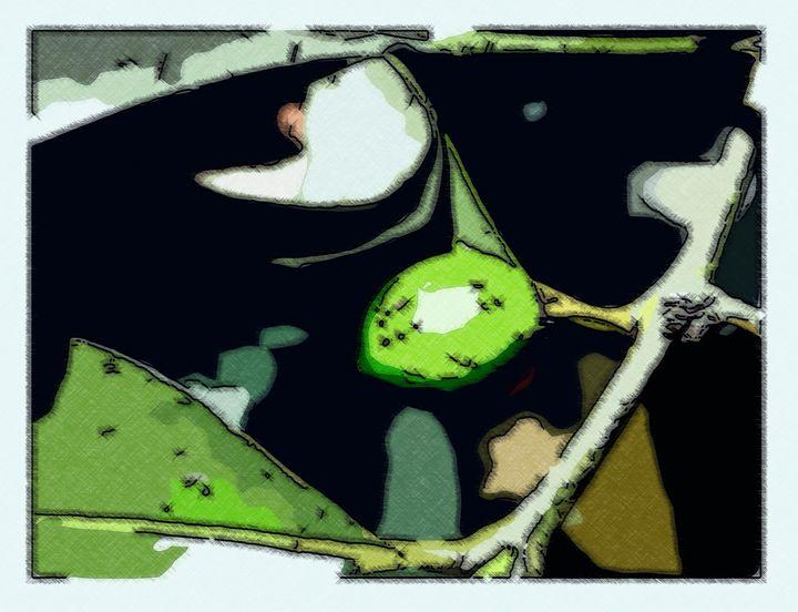 Frutinha verde em um ramo - CLA