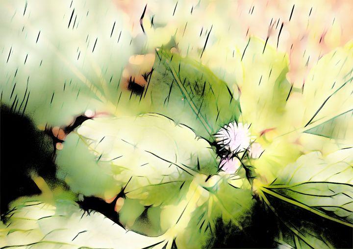 Goatweed flower - CLA