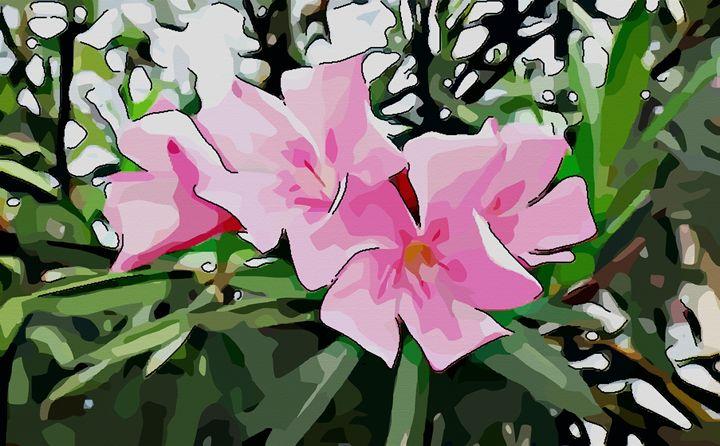 Oleander - Pink or rose - CLA