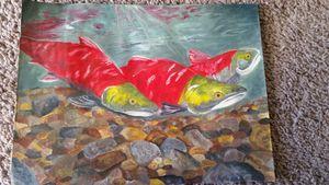 Salmon Spawning in sunlight