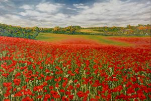 Poppy field - Dewey Franklin