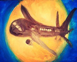 The Airplane Shark - Beautiful Mind by Sarah James