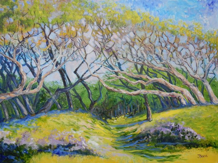 Live Oaks Canopy - Joy Parks Coats Art