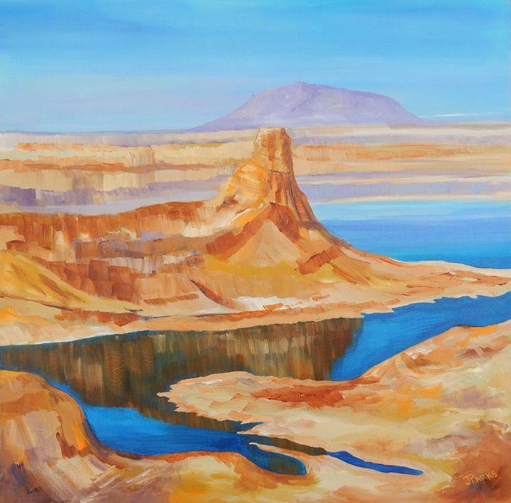 Painted Desert - Joy Parks Coats Art
