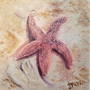 Sea Star at Fort Fisher