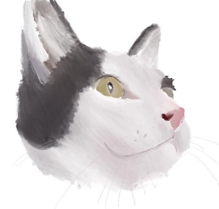 Schmidt the cat - Lili - Art by Lili