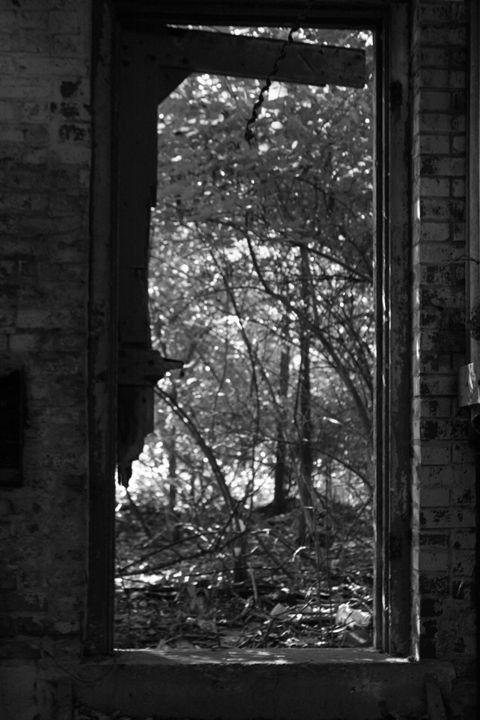 Door 2 - Fine Art By Jamie