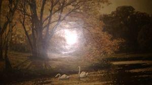 Konrad mueller kurzwelly swan lake o