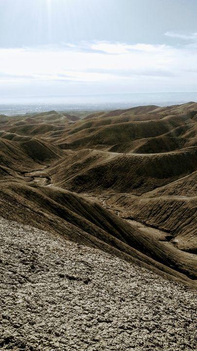 Dunes - The Twisted Elephant
