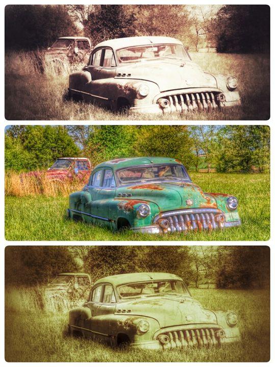 Classic - Chandra Lynn PhotoArt
