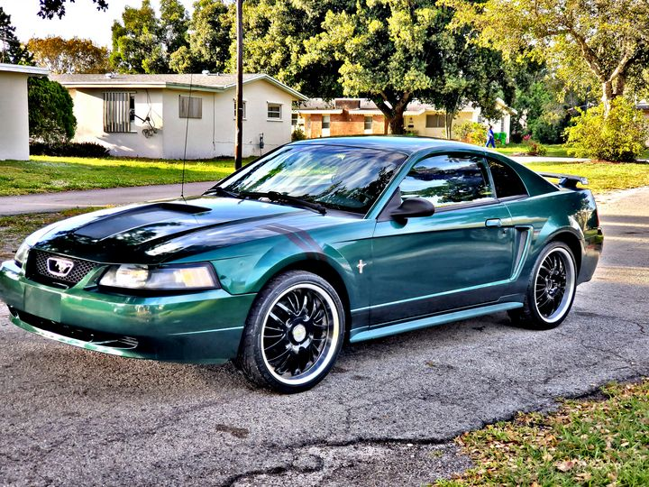 Mustang - ElReyN1