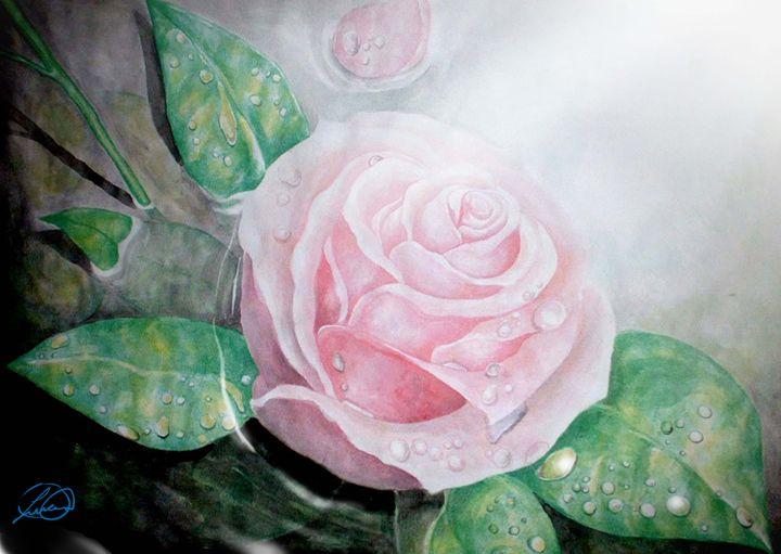 Rose Drops - DionysusGallery.com