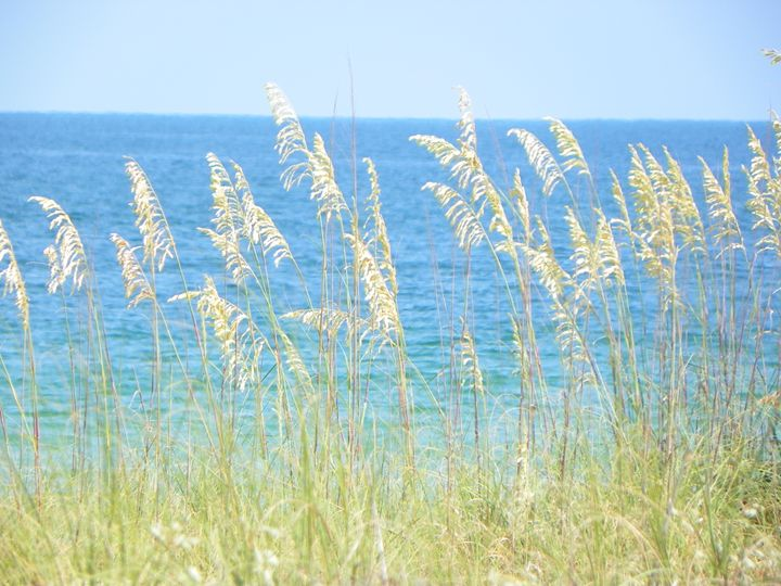 Tranquility on Mexico Beach - Karla Jo's Gallery