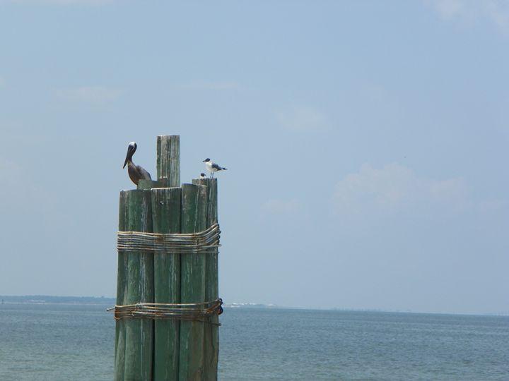 Birds of a Feather - Karla Jo's Gallery