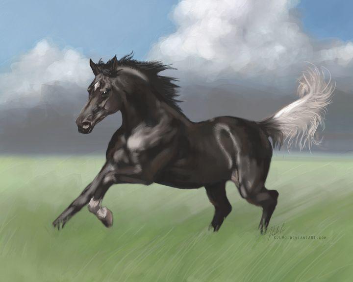 Black Arabian with Gulastra Plume - KJL Art