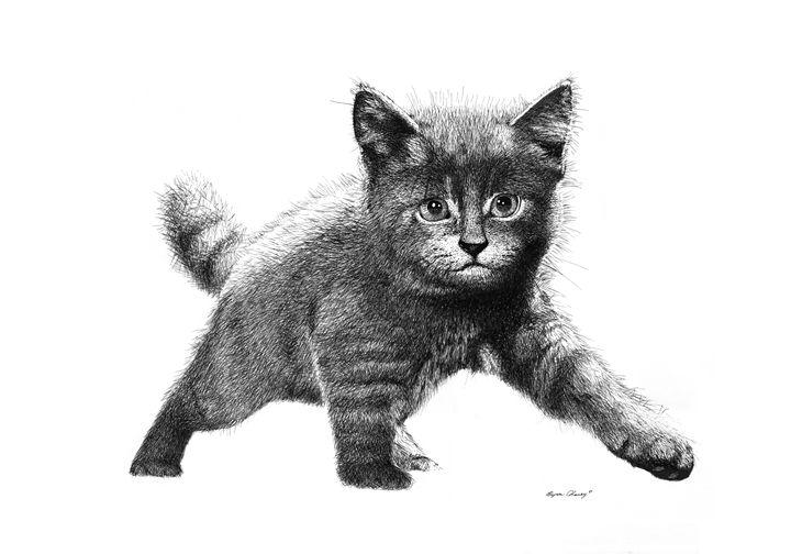 Grey Kitten - Byron Chaney's Illustration and Design