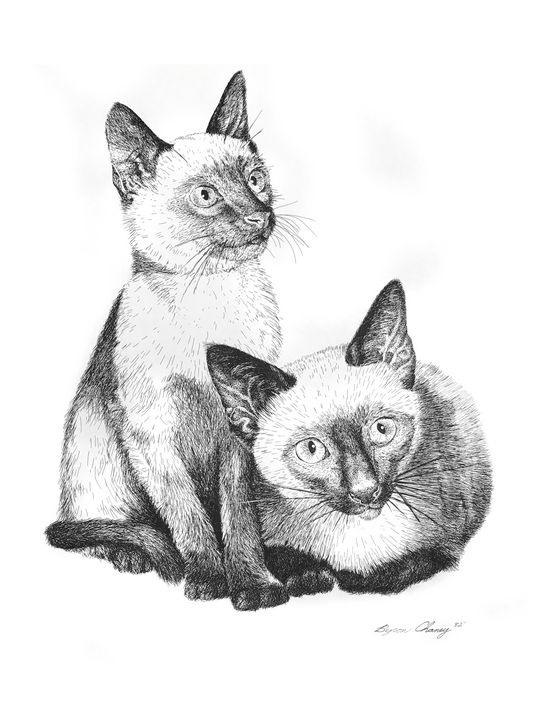 Siamese Twins - Byron Chaney's Illustration and Design