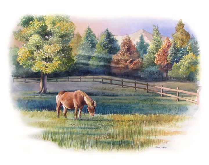 Waxhaw Horse - Byron Chaney's Illustration and Design