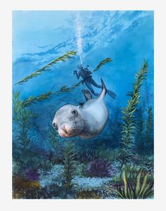 Swimming with a Seal - Byron Chaney's Illustration and Design