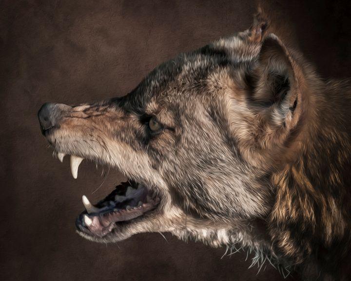 Wolf Portrait - Crazy Cairn Studio