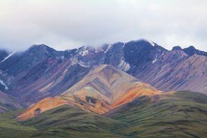 Denali National Park 1 - Artistic Photos by Terry Baumgartner