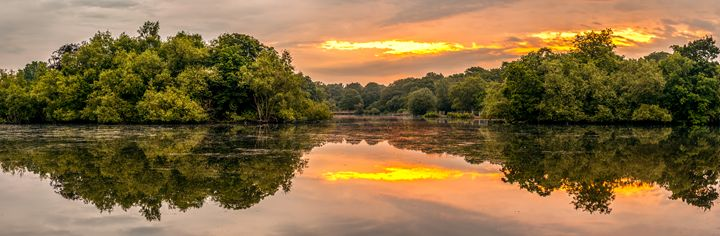 Epping Forest Sunrise - FineArtNorfolk
