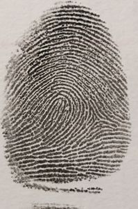 Fingerprint - Infallible evidence