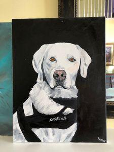 Angus the guide Dog - SJOriginal Paintings