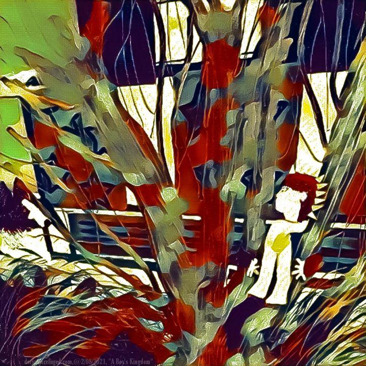 A Boy's Kingdom - Refuged