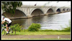 Memorial Bridge - Refuged