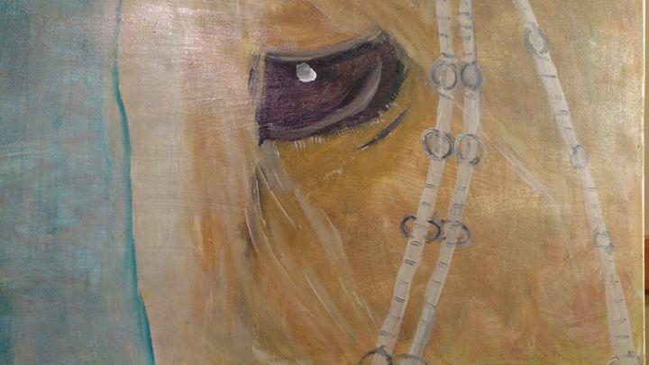 A Soft Eye - Backwoods Gallery