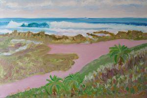 Banana Beach with Dune Aloes