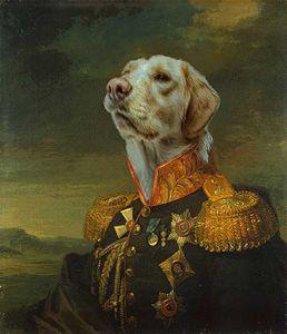 Sire Alexandrovich Stroganov, Dog - Kara English