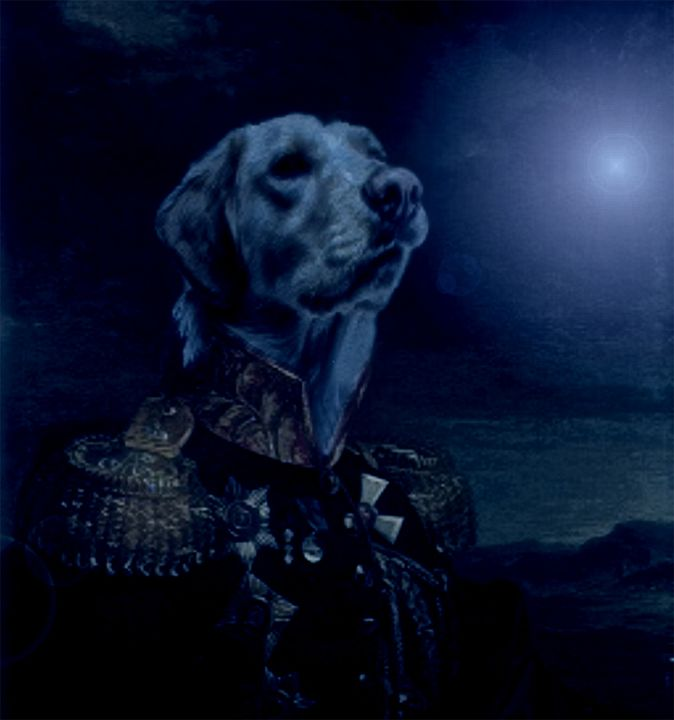 Sire Alexandrovich's Moon Watch - Kara English