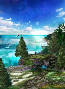 Cecelia's Cove
