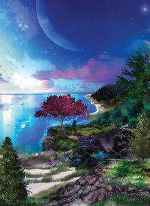 Cove of Wonder