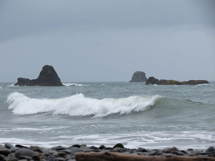 Pacific Northwest Coast - Michael