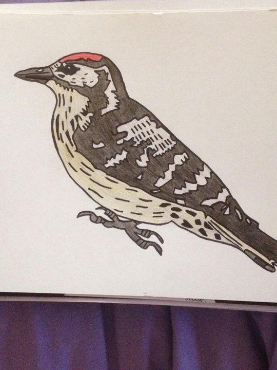 Beautiful bird - Art by natalie