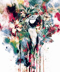 Parrot II - Riza Peker
