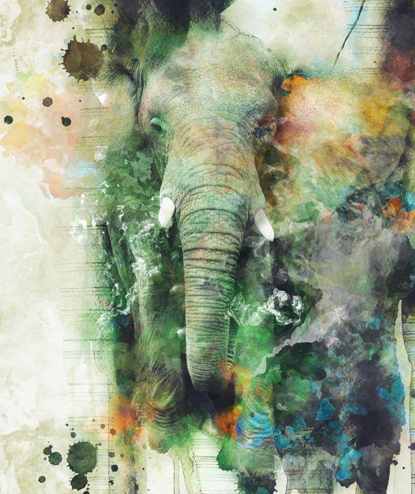 Elephant - Riza Peker