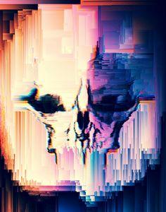 Tarsier Skull
