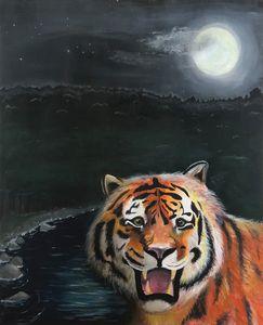 Tiger tiger - Olivia Haines