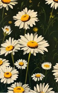 Beautiful White-petaled Flowers Art