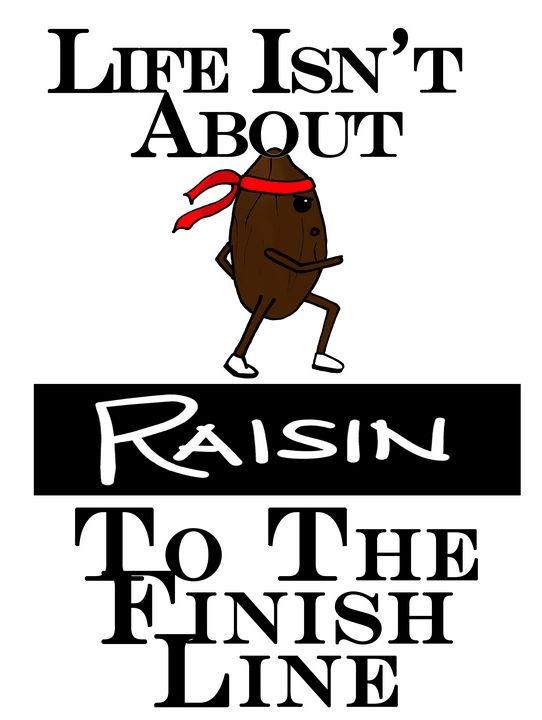 Raisin To The Finish Line - Floofs and Maths